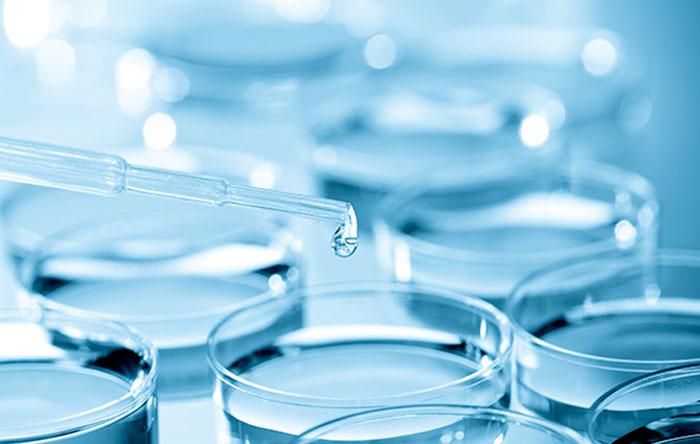 Autologous Haematopoietic Stem Cell Transplant
